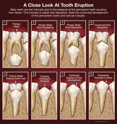 how to tell if tooth is hurt after fall